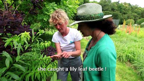 Les Jardins De Valloires Argoules by Visiter Les Plus Beaux Jardins En Touraine Visit The