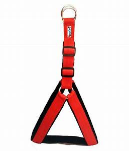 Petshop7 Nylon 1 25 Inch Red Dog Harness  U0026 Rope