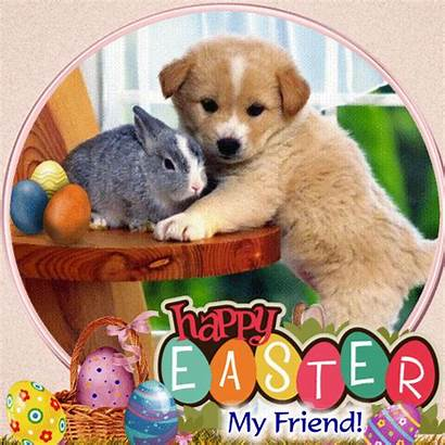 Easter Happy Card Friend Cards Greetings Greeting