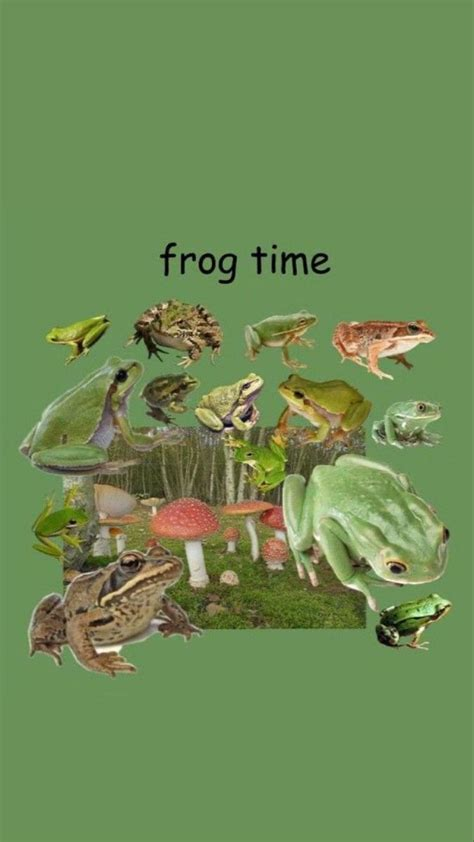 aesthetic frog wallpaper laptop 40 best collections