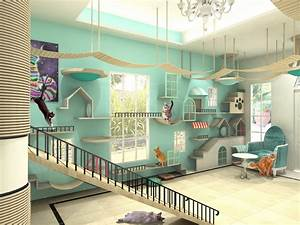 Cat, House, Design, Private, Residence, Malaysia