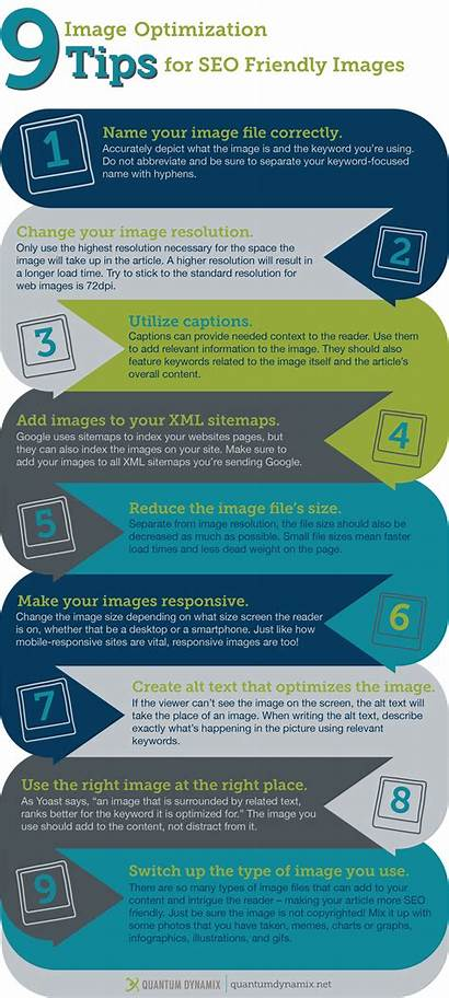 Seo Tips Friendly Optimization Infographic