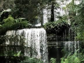 Falls Farm And Garden