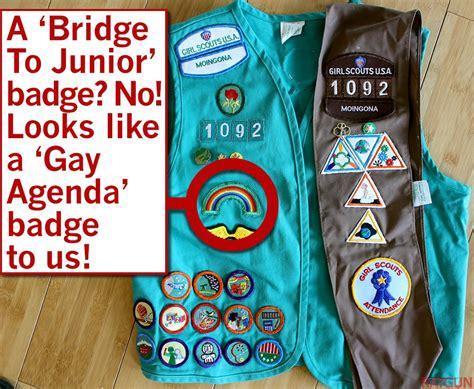 raygun investigates  girl scouts beloved organization