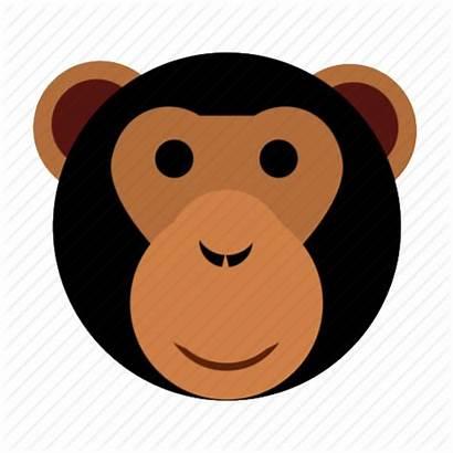 Monkey Face Ape Happy Icon Head Clipart