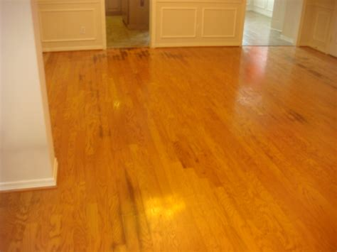 wood floor stain removal remove all stains com how to remove urine stains from wood floors