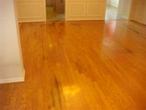 Staining wood floors dark to hide wood floors for How to remove black urine stains from hardwood floors