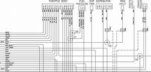 1995 Lt1 Wiring Diagram Ez 26631 Archivolepe Es