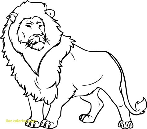 lion drawing  kids  getdrawingscom