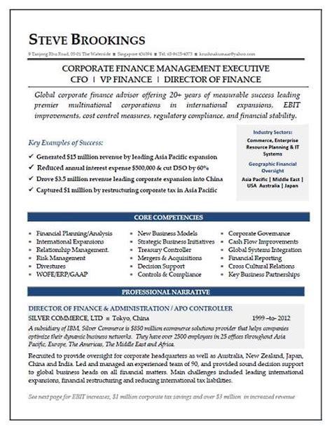cfo resume sample vice president  finance director