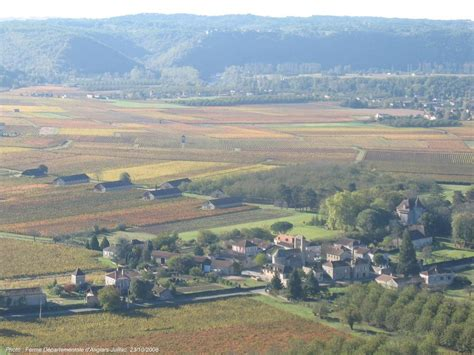 viticulture chambre d 39 agriculture du lot