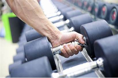 Exercise Weight Training Guide Workout Exercises Fitness