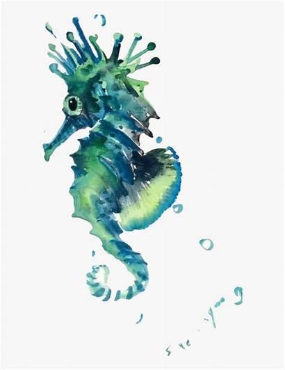 Seahorse Sea Watercolor Clipart Creatures Painting Creature