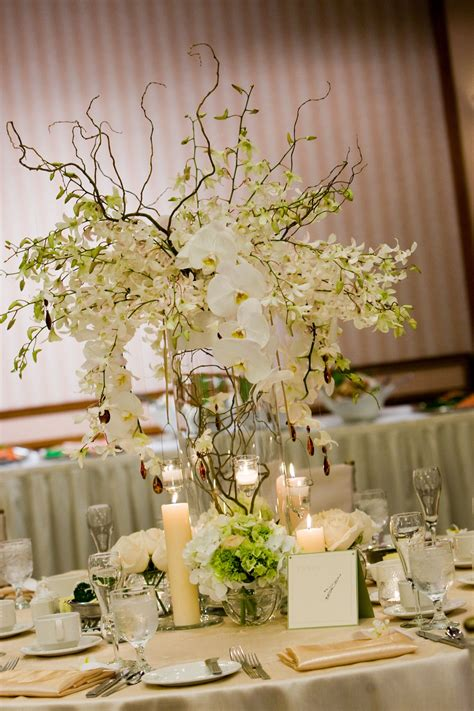 White Dendrobium Phalaenopsis Orchids Curly Willow