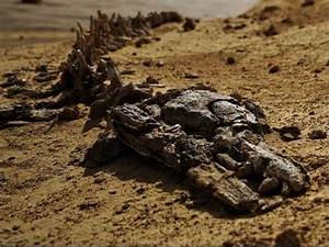 The Truth about Planet Mars Dead Alien - YouTube