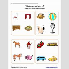 Animal Classification Worksheet Homeschooldressagecom