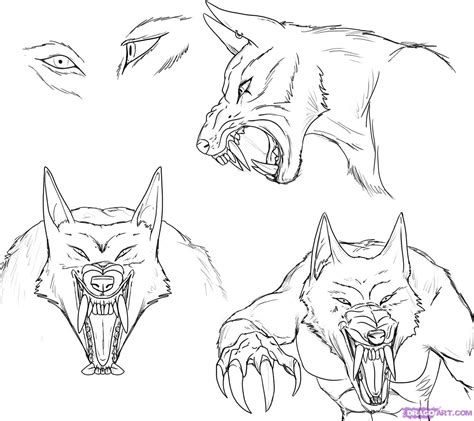 Drawn face werewolf - Pencil and in color drawn face werewolf