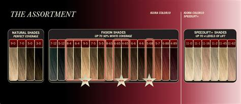 1000+ Images About Hair Color Chart On Pinterest