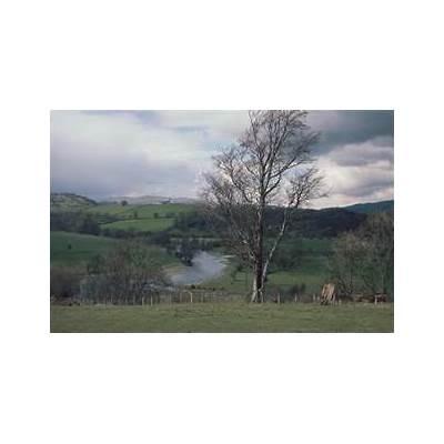 Powys - Wikiwand