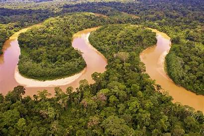 River Rainforest Del Brazil