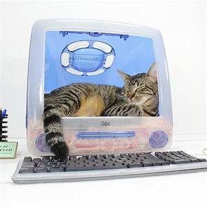 Computer Pet Bed—re-cycled, good for the environment ...