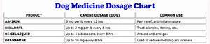 Dog Human Medication Dosage Conversion Thedogplace Org