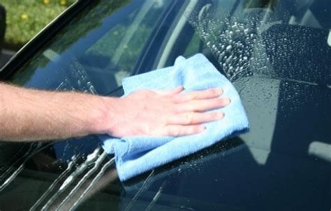 Removing Mold to Prevent a Car Glass Repair