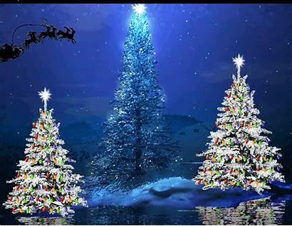 Santa Sleigh Trees Flying
