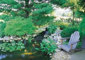 Fish Pond in Your Back Yard