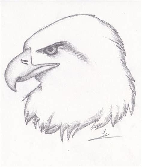 easy animal drawings ideas  pinterest simple