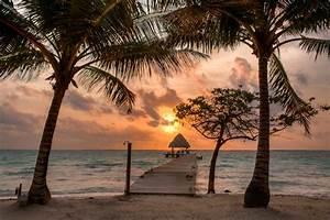 sunrise, Belize, wooden walkway, palm trees, islands ...
