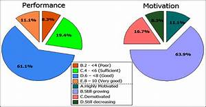 Pie Chart Of Performance And Motivation Assessment