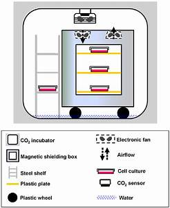 The Geomagnetic Shielding System For Cell Culture  A