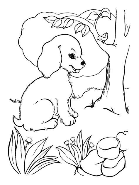 Domme Hond Kleurplaat by Kleurplaat Puppy Hondje