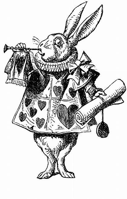 Digital Alice Rabbit March Stamp Stamps Wonderland
