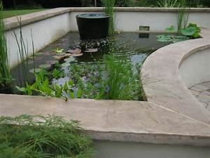 7 Ideas for Building a Koi Fish and Backyard Pond – Home ...