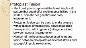 Somatic Hybridisation