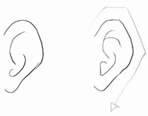 Draw Ears - How to Draw Cartoon & Illustrated Ears in Easy ...