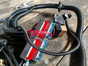 Ls1 Wire Harness Diagram : psi ls1 t56 standalone wiring harness ls1tech camaro ~ A.2002-acura-tl-radio.info Haus und Dekorationen