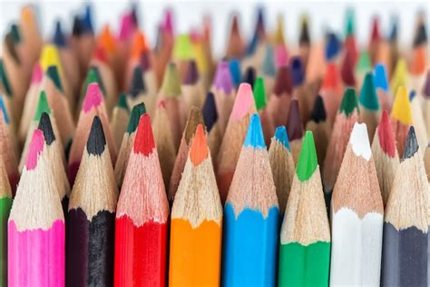 colored pencils    beginners