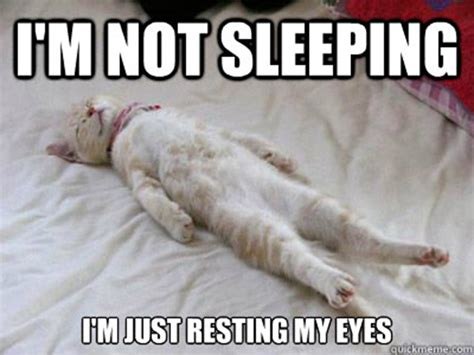 Sleeping Memes - 30 most funny sleeping meme photos you have ever seen