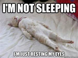 30 Most Funny Sleeping Meme Photos You Have Ever Seen