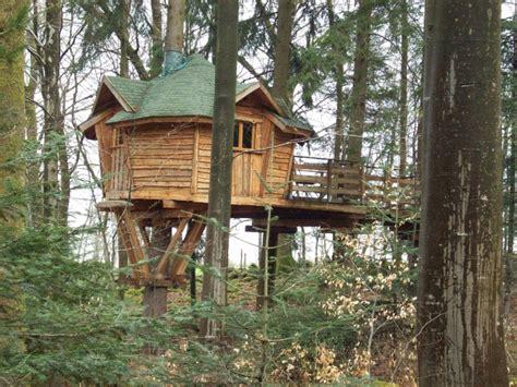 maison en bois dans les arbres photo la maison dans les arbres les vosges la chapelle aux bois par betty