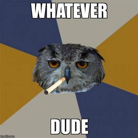 Whatever Meme Face - art student owl meme imgflip