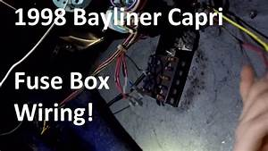 Bayliner Fuse Box Wiring - Day 5