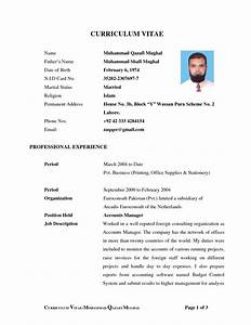 job resume biodata format for marriage proposal in word