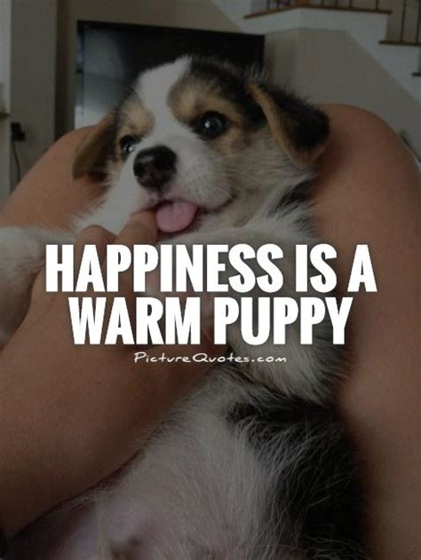 happiness   warm puppy picture quotes