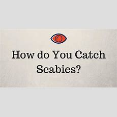 How Do You Get Scabies?