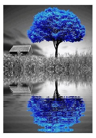Splash Nature Water Azul Noir Painting Illusion