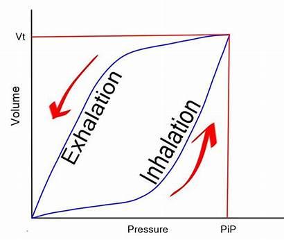 Volume Pressure Loop Ventilation Mechanical Ventilator Curve
